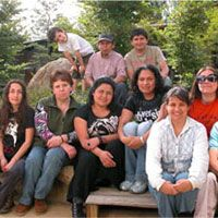 green glass chile team